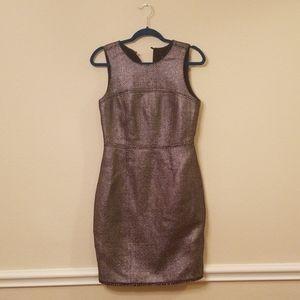 Size 6 Banana Republic Dress